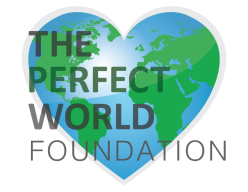 The Perfect World Foundation